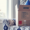 intercity packers and movers price
